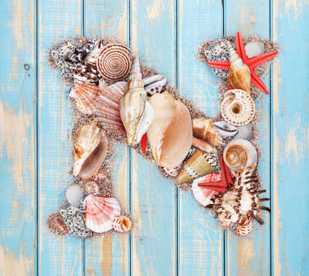 Letter N made of seashell on blue wooden background photo
