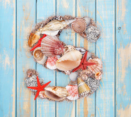 Letter S made of seashell on blue wooden background photo
