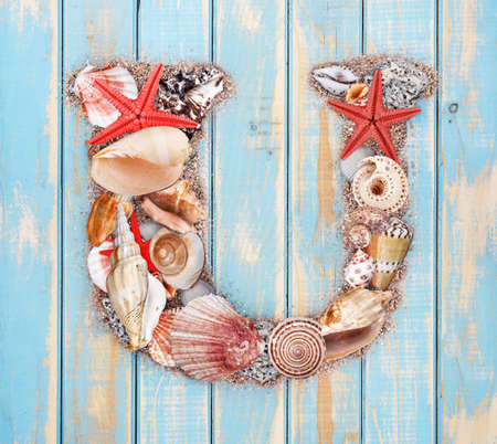 Letter U made of seashell on blue wooden background photo