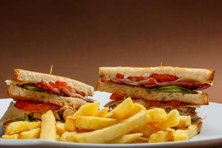 toasted sandwich: Toasted sandwich served with french fries