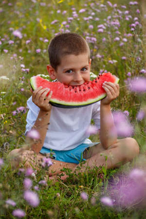 Happy child eating watermelon, outdoors shot photo