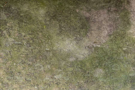 cruddy: Used artificial green grass carpet Stock Photo