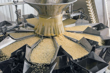 Automated food factory make fresh pasta Stockfoto