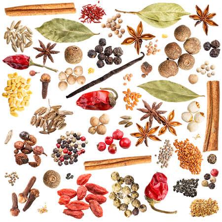 ESPECIAS: Spice colecci�n aisladas sobre fondo blanco Foto de archivo