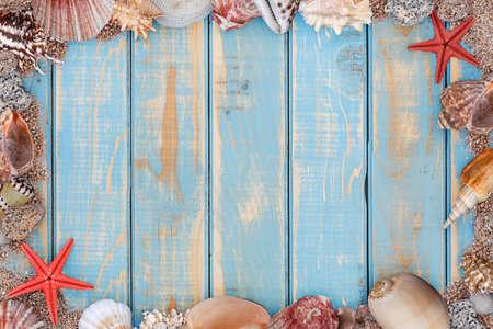 animal texture: Sea shells frame on vintage shabby wooden board