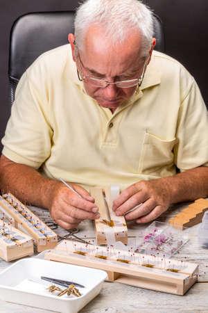 Elderly man spread a butterfly wings on a butterfly spreading board photo