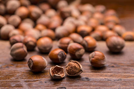 filbert: Hazelnuts, filbert on old wooden surface