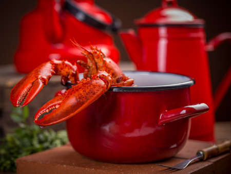 lobster pot: Cooked lobster in red pot Stock Photo