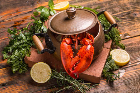 green herbs: Boiled lobster with lime and fresh green herbs