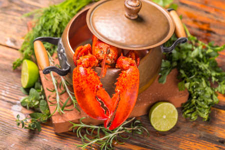 lobster pots: Boiled lobster in copper pot Stock Photo