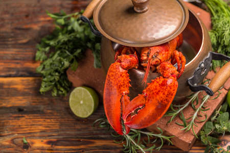lobster pot: Boiled lobster with lime and fresh green herbs