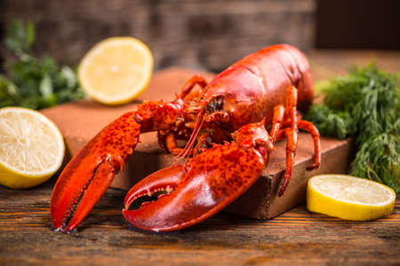 seafood: Freshly cooked lobsters served whole for dinner