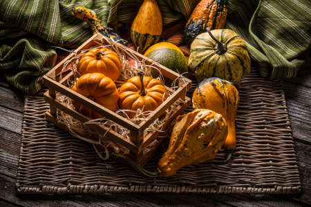 decorate: Decorative pumpkins collection on vintage style Stock Photo