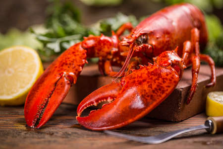 lobster dinner: Boiled lobster on old wooden background