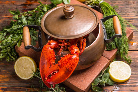lobster pot: Boiled lobster in kitchen pot