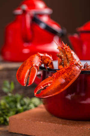 lobster pot: A red pot of boiled lobster