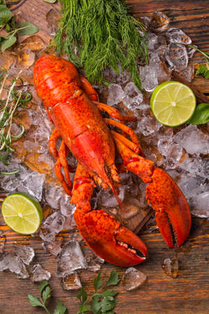 lobster dinner: Lobster on ice with herbs and lime Stock Photo