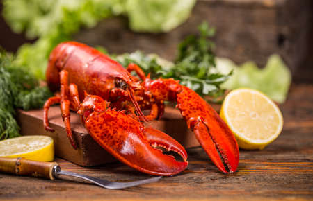 lobster dinner: Cooked lobster on wooden background Stock Photo
