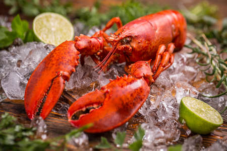 Seafood lobster on ice with lime
