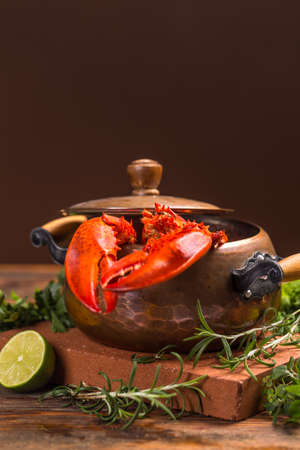 lobster pot: Cooked european common lobster on brown background Stock Photo