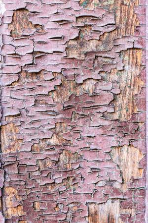 decrepit: Decrepit brown old wood background