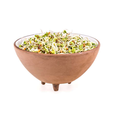 sprouted: Mix of sprouted seeds in bowl on a white background