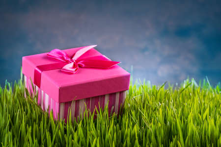 surprise box: Gift box on the green grass Stock Photo