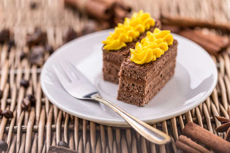 cake plate: Dark chocolate cake served on white plate
