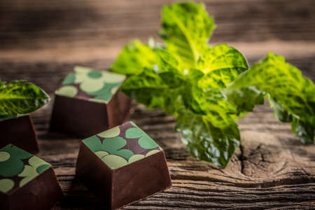 praline: Chocolate praline candy with mint on wooden background