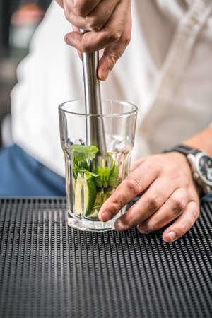 Bartender preparing mojito cocktail drink Standard-Bild