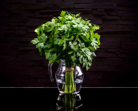 potherb: Bunch of fresh green parsley on black background