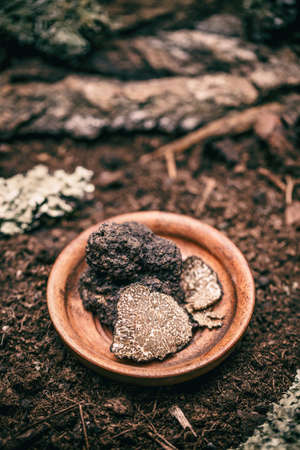 Delicacy mushroom black truffle in wooden plate