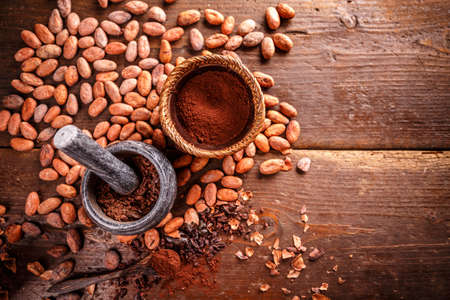 Cocoa concept with stone mortar and pestle with raw, peeled, and crushed Theobroma cacao cocoa beans