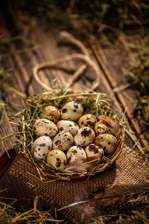 Quail eggs in hay nest on wooden background