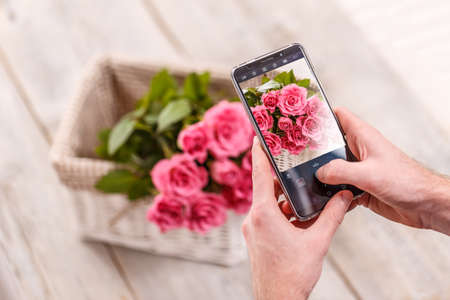 Male hand takes pictures of pink flowers with mobile smart phone Standard-Bild
