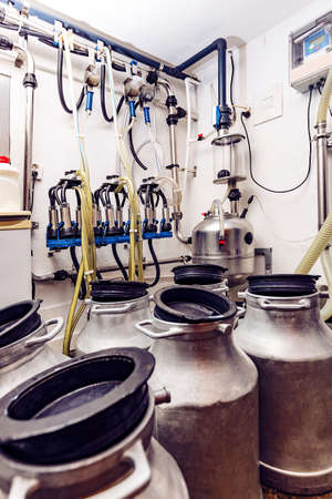 Aluminium container of milk, automated mechanized milking equipment on background Stock fotó
