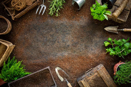 Top view of gardening tools and herbs with space for your text