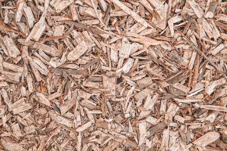 Background with wood shavings