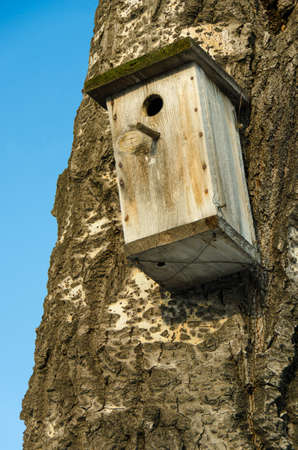 empty nesting box  Stock Photo
