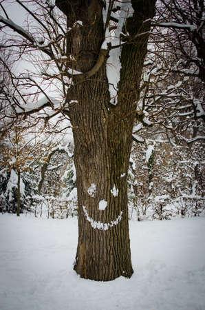 tronco d'albero con la faccia di neve in inverno