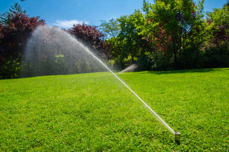 irrigation the park lawn Stock Photo - 21050958