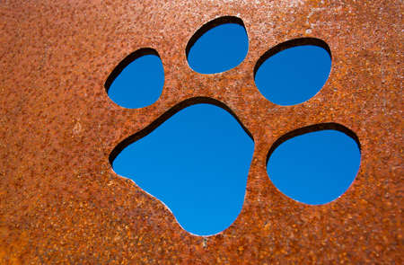 Silhouette of a cat paw in rusty metal wall photo