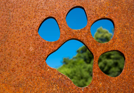 Silhouette of a cat paw in rusty metal wall in front of trees photo