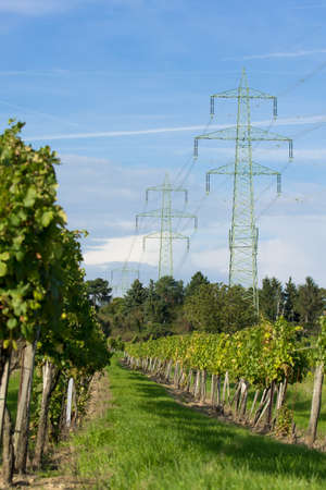 High Voltage Wires over vineyard Stock Photo