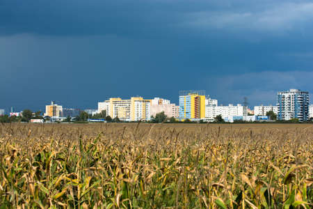 periphery: Apartment Buildings in Bratislava near a Cornfield