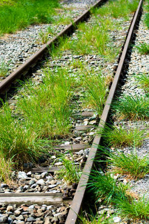 Tracce ferroviario con Grass Archivio Fotografico