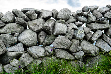Stone Wall With Flowers And Grass