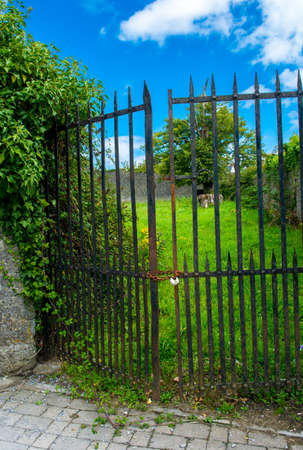 iron gate: Rusty Door With Chain And Padlock Protecting Green Garden