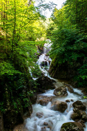Waterfall in Forest in Austria