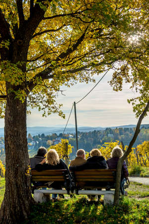Group of Male and Female Seniors Sitting on Bench with View in Autumn